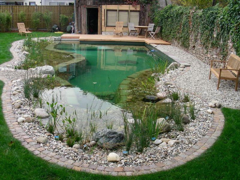 бассейн-пруд