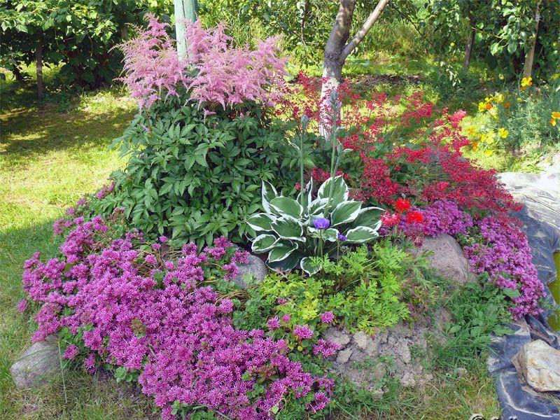 альпийская горка цветочная
