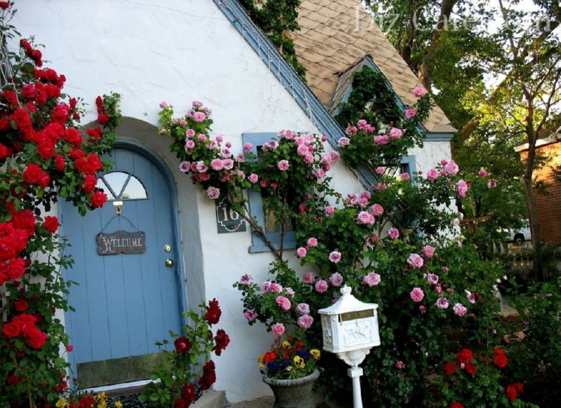 домик с розами
