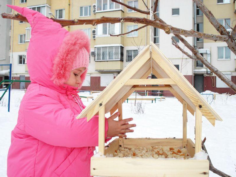 Кормушку из дерева можно сделать разной формы