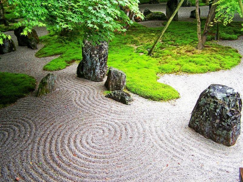 Красивый сад камней на даче