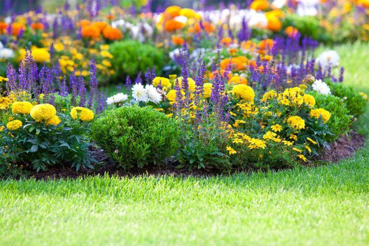 Миксбордер из маленьких цветов