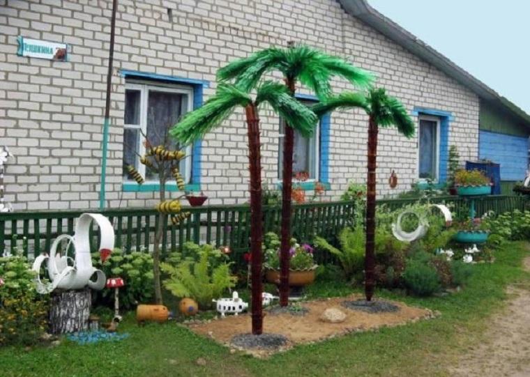 Бутылочные пальмы