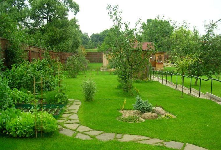 Газонная трава без сорянков
