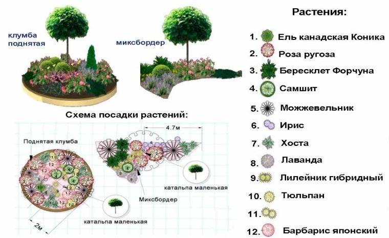 План будущего цветника