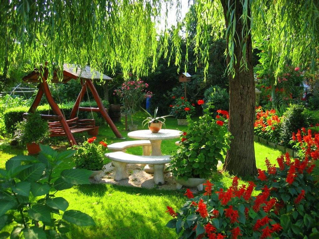 Мой прекрасный сад своими руками 90