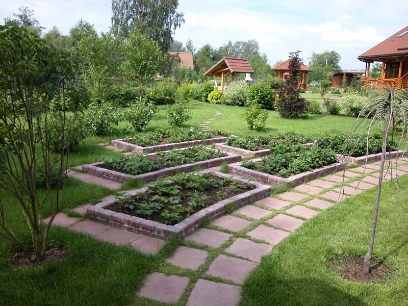 Дизайн огорода фото