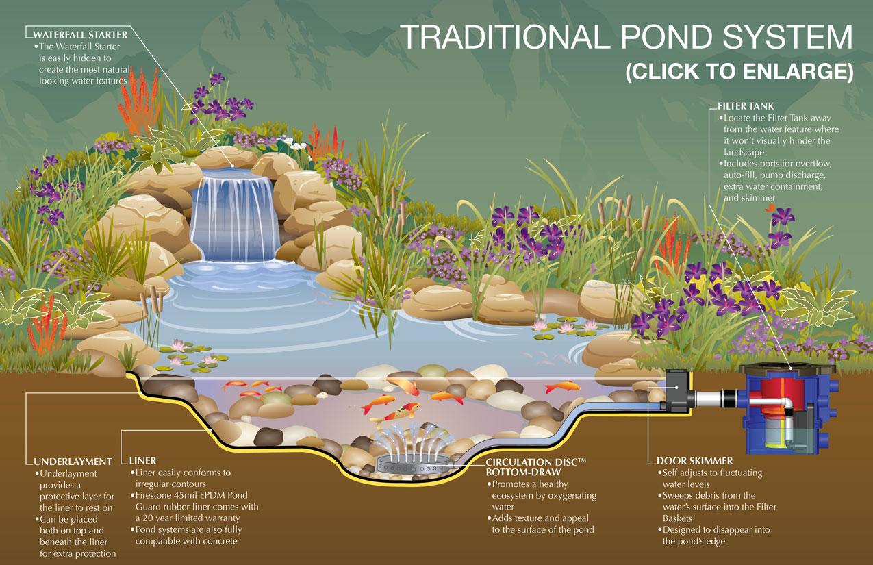 for Best koi pond design 2017