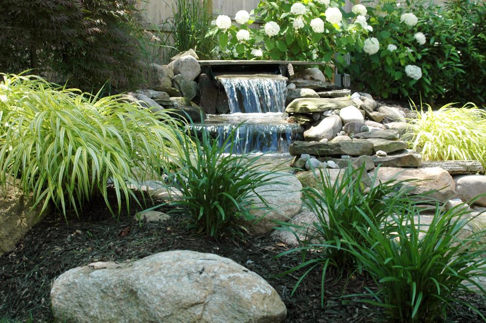 Как оформить водоем в саду