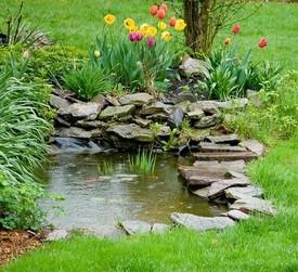 Как оформить небольшой водоем