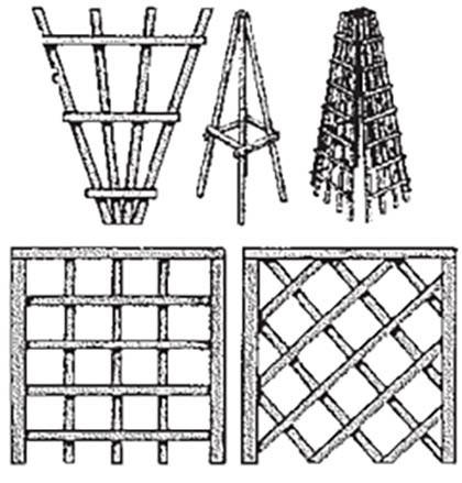 Схемы опоры-конуса для розы