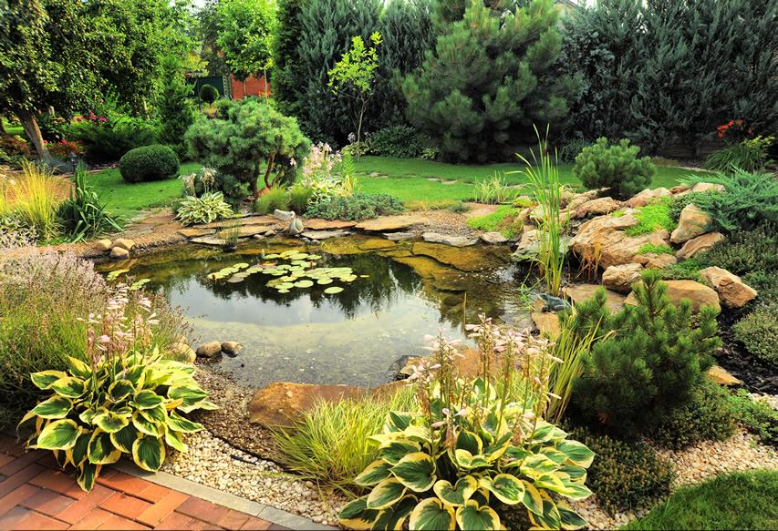 Ландшафтный дизайн с водоемом