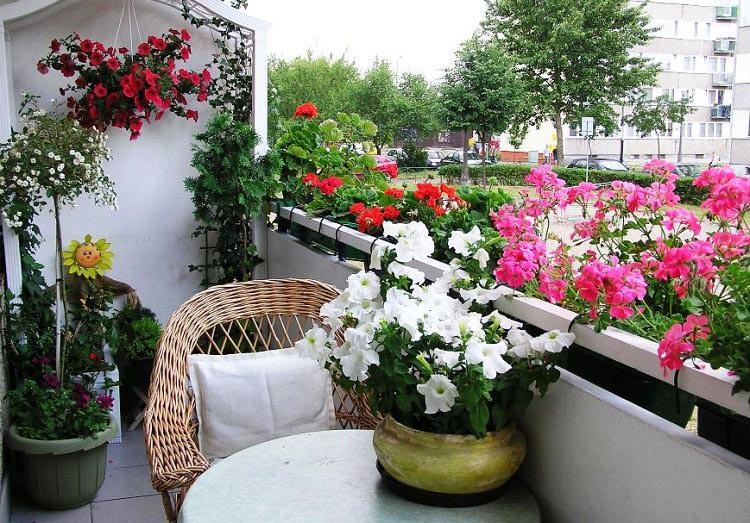 Балконный сад