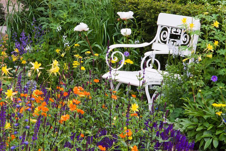 Гравилат в саду