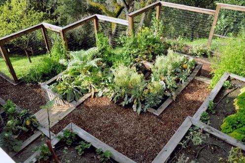 Оригинальный огород