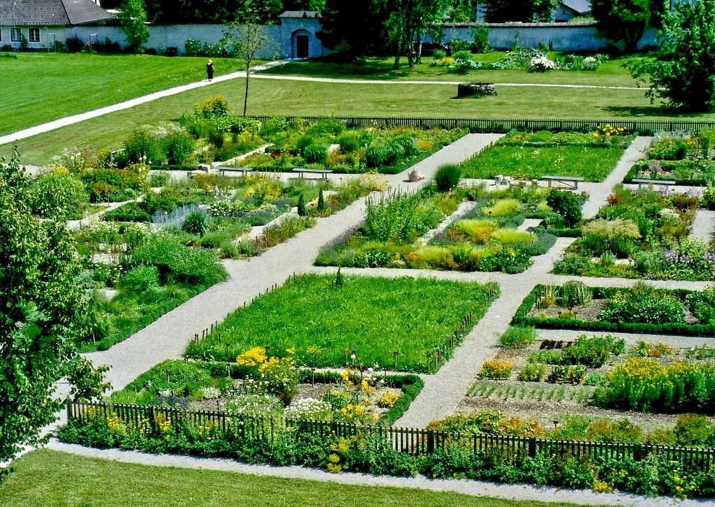 Сад с лекарственными травами