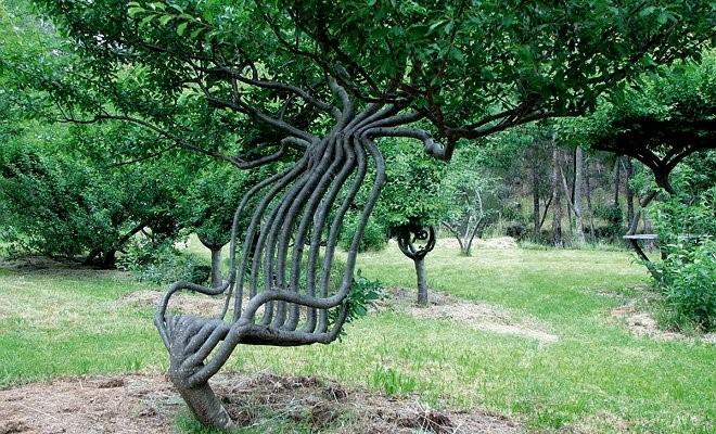 Арбоскульптура своими руками