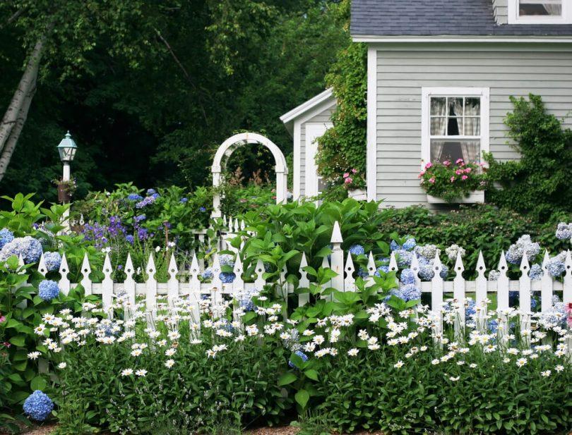 палисадники у дома фото