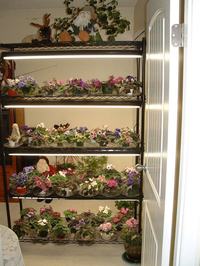 Стеллажи для цветов, собранные собственноручно