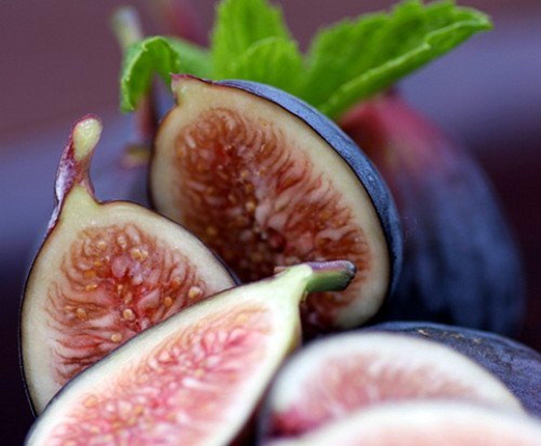 Инжир: выращивание в домашних условиях
