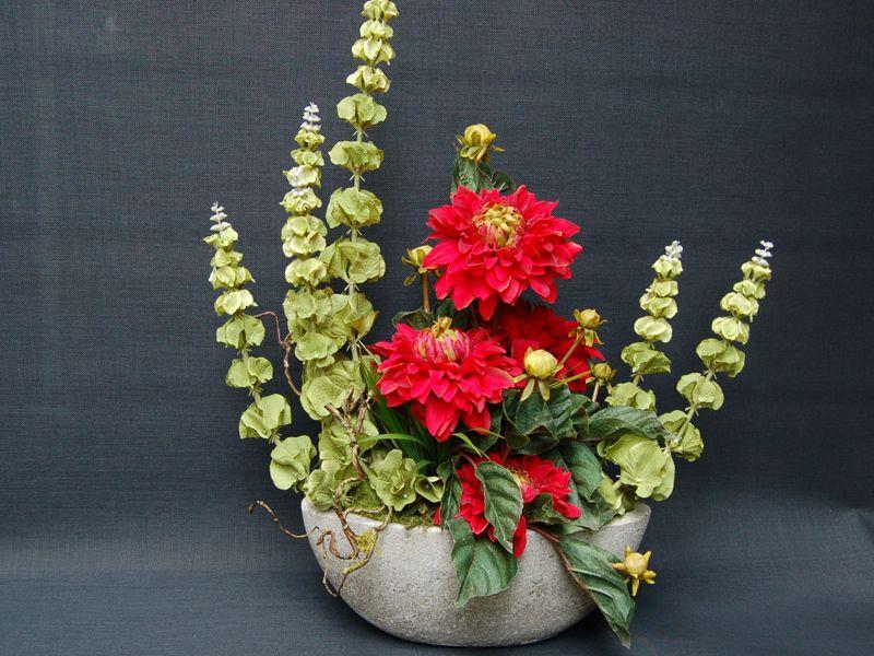 Молюцелла или ирландские колокольчики: сорта, посадка, уход и выращивание из семян
