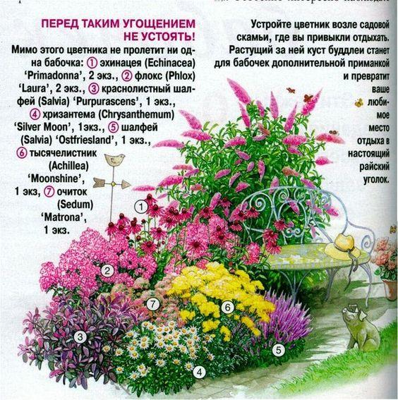 Виды многолетних цветов описание и