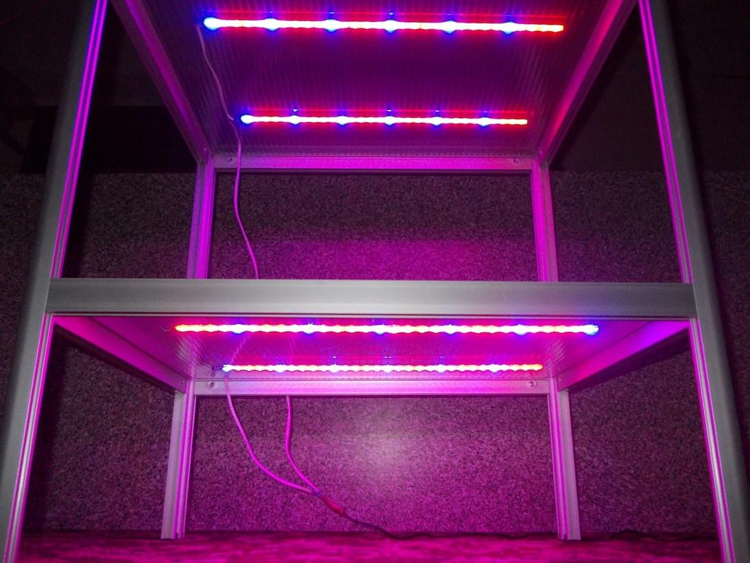 Стеллаж для рассады с подсветкой: изготовление своими руками, стоимость готовых изделий
