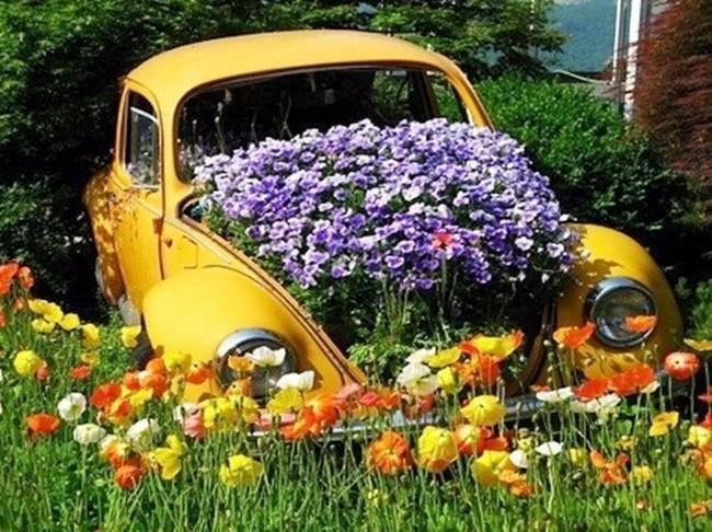 Кузов автомобиля в цветах
