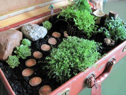 Мини-сад из чемодана