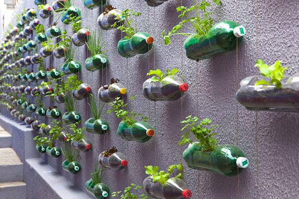 Кашпо из бутылок на стене