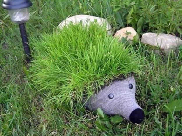 Ежики с газонной травой