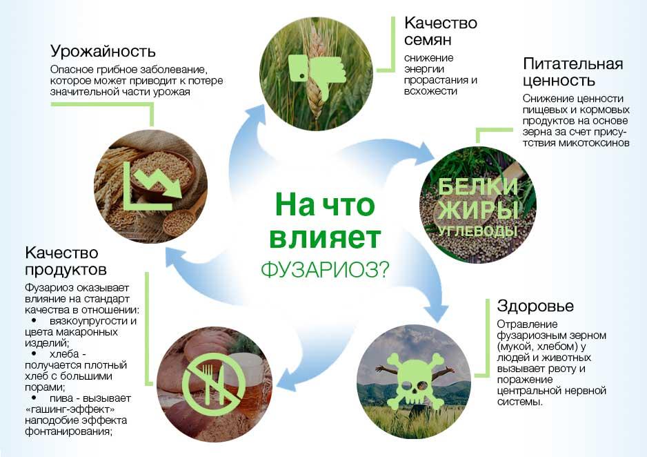 Последствия поражения грибком