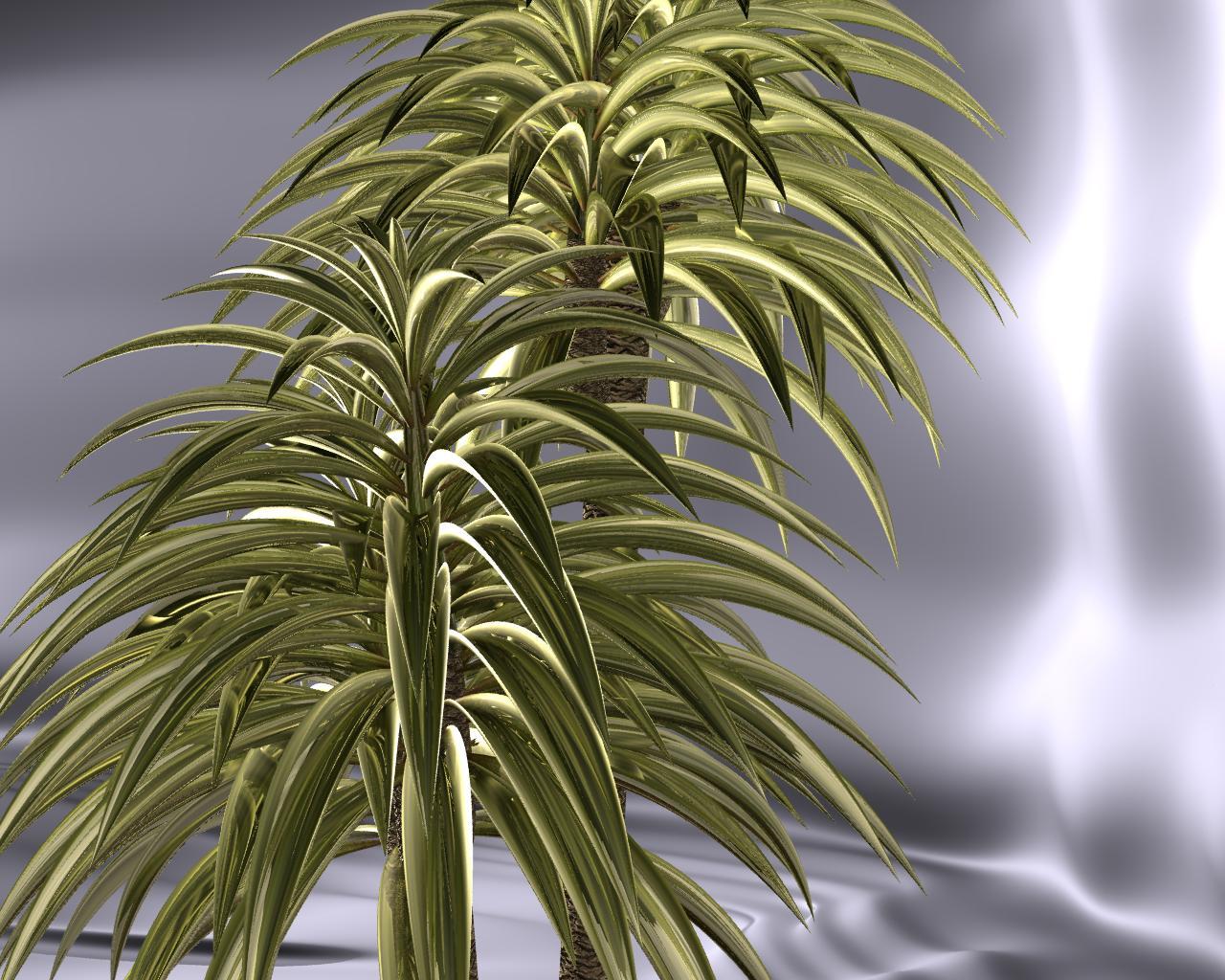 Листья юкки