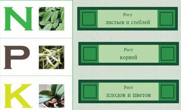 Три вида элементов для растений