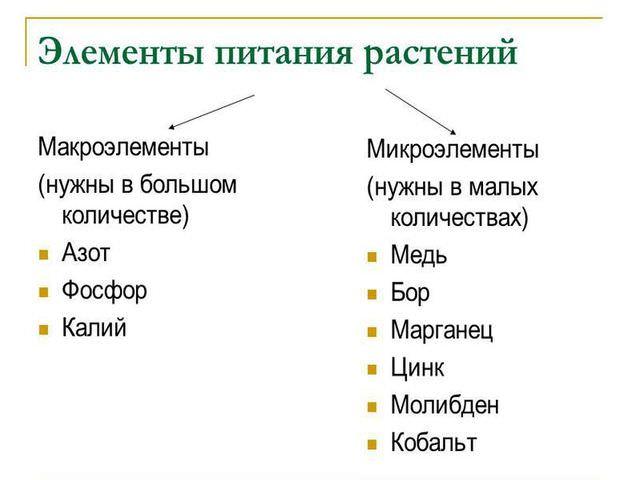 Элементы питания растений
