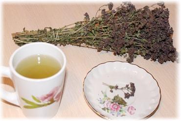 Чай из орегано