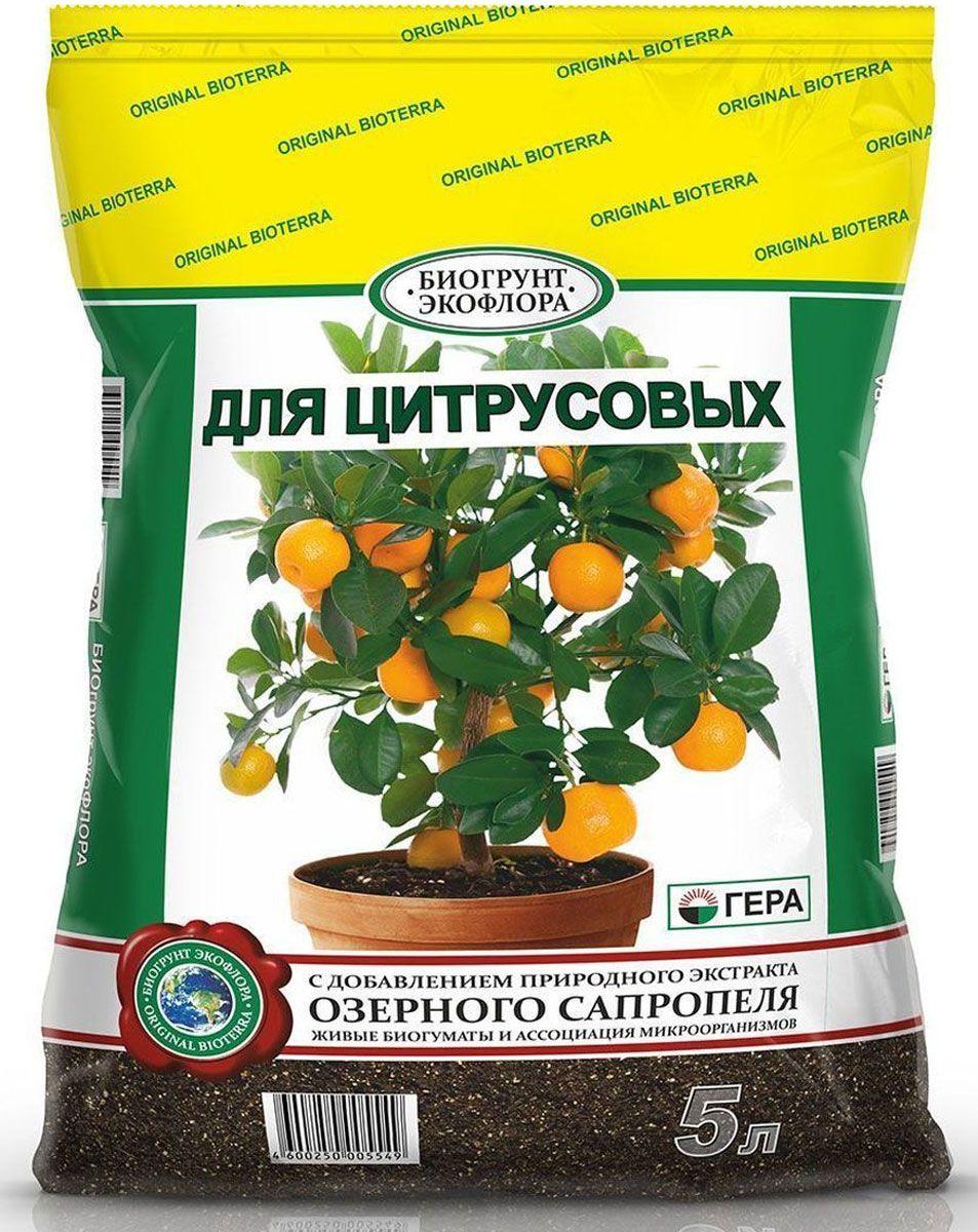 смесь для цитрусовых пальм